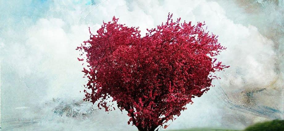Buona anno d'amore